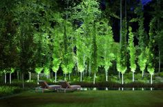 #Uplighting landscape lighting Jeffrey Carbo Project Gallery  Squire Creek Residence