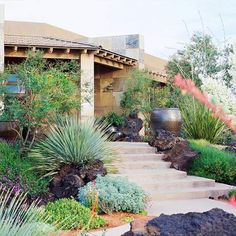 Picture Of trendy and beautiful desert garden decor ideas 19