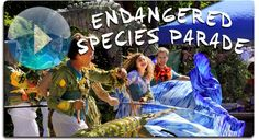 """IBEX Puppetry Endangered Species Parades (website) """"Heather Henson's personal art is driven by a deep love and respect for the Earth. The ... Parades are a way of opening discussion about the environmental troubles of our world without negativity."""""""