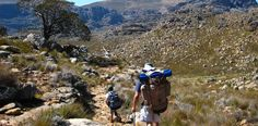 The magnificent Otter Trail in South Africa.   Photo credit: www.southafrica.net Otters, Hiking Trails, Photo Credit, South Africa, Grand Canyon, Adventure, Mountains, Nature, Travel