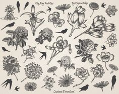 Hand Drawn #Flowers Clip Art #Clipart with hand drawn images of flowers  This clip art contains 38 different hand drawn flowers, very suitable for cards, invites, iron on tra... #etsy #digiworkshop #scrapbooking #illustration #creative #printables #cardmaking #floral #bird