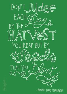 The seeds that you plant.