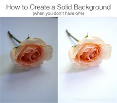 How To // Create a Solid Background