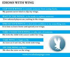 Photo: Idioms with wing. #idioms #vocabpage For more idioms with parts of animals please visit:http: //www.vocabularypage.com/2016/03/idioms-with-parts-of-animals.html