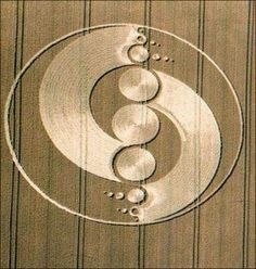 Crop circles - Des cercles dans la nuit: Hesse 2007