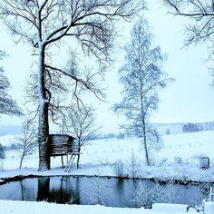 Zima we Wrocławiu jest totalnie pozbawiona uroku i deszczowa. Na szczęście mogę się ratować wspomnieniem wiejskiego śniegu. Pamiętacie domek na drzewie zbudowany przez Małża i Człowieka Wyżerkę? ❄️❄️❄️ #śnieg #nawsi #woda #staw #jeziorko #domeknadrzewie #wspomnienie #zima #winter #wintermood #dolnośląskawieś #świerki #snow #treehouse Outdoor Furniture, Outdoor Decor, Park, Instagram, Home Decor, Decoration Home, Room Decor, Parks, Home Interior Design
