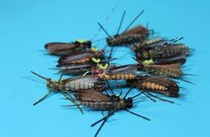Fly Tying Nation: Foam EA Stonefly X