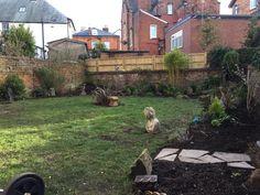 Home And Garden, Patio, Outdoor Decor, Plants, Home Decor, Decoration Home, Terrace, Room Decor, Porch