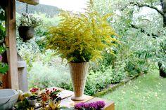 DIY Herbstdeko