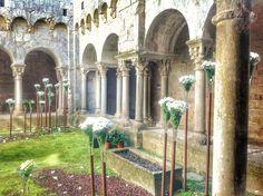 Monestir de Sant Pere de Galligants. #claustre #cloister.