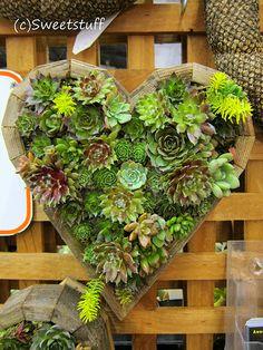 garden recycling ideas | Wheelchair Gardening (11) - JRP Recycling ...