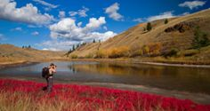 5 cool things to do in Kamloops this Fall @ vancitybuzz, this list applies for 2014, but most of the things I should be able to do anyway this weekend