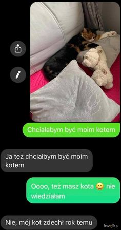 Funny Sms, Wtf Funny, Polish Memes, Weekend Humor, Sense Of Life, Fun Facts, Lol, Cute, Funny Text Messages