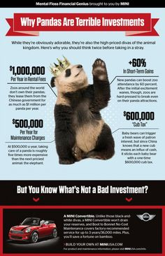 Why Pandas Are Terrible Investments | Mental Floss