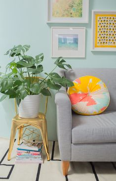 HOME | Chair Plant S