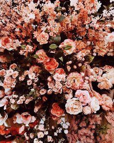 Types Of Purple Flowers Products Silk Flowers Arrangements Tips Flowers In Hair, Spring Flowers, Silk Flowers, Beautiful Flowers, Purple Flowers, No Rain, Flower Aesthetic, Flower Wallpaper, Planting Flowers