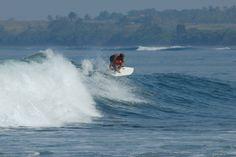 Tabla de surf / Surfboard Trinity en Medewisurfhomestay