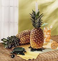 Candle stands to be used to hold the pineapples up. If only I knew this last week, our pineapples wouldn't have fallen over!