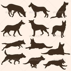 Vector Set of Dogs Silhouettes - Animals Characters