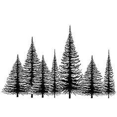 Lavinia Timbres - Clear Stamp - Groupe d'arbre de Noël