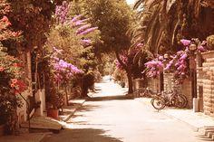 Kınalı ada / Princes' Islands - Istanbul  by ~treedy