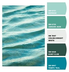 WATER ~ Paint colors from Chip It! by Sherwin-Williams  Lisa4509