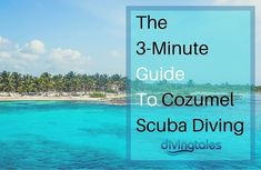 3-Minute Guide To Cozumel Scuba Diving