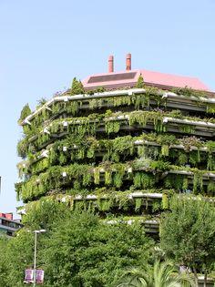 Vertikal odling in Barcelona. FOTO KARINA BROZINIC