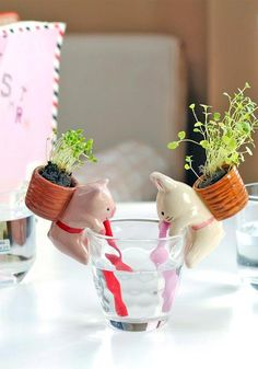 Cute Animal Self Watering Plant Pot Pot material: pottery 4 styles available: - Rabbit (Mint) - Panda (Basil) - Pig (Clover) - Cat (Wild strawberry) Includes a ceramic animal planter, plastic straw, s