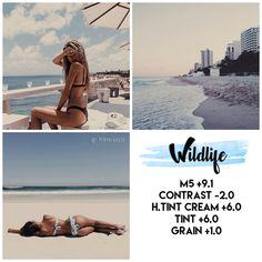 Vsco Feed. #vsco #app #feed #instagram Follow me on Ig: @filtre.vsco