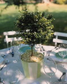 Go green and plant a tree - a centerpiece guests can take home and plant themselves :)