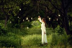 harvest of lanterns -