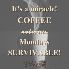 Coffee quotes Surviving Mondays! #coffee #beanhookup #quote #caffeine #coffeeaddict