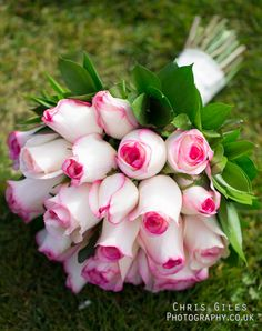 white roses with pink tips ~ Chris Giles  Lovely..