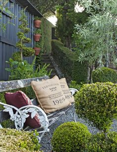 A beautiful old bench seat surrounded by clipped topiary and a weeping pear provides a place to pause in the back garden.
