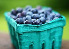 Blueberries!  We love blueberry pickin'