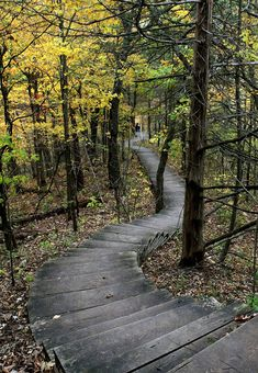 autumn, Whitewater State Park, Minnesota