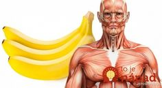 Bananas Health Benefits-What Will Happen To Your Body If You Eat 2 Bananas Per Day? Good Health Tips, Healthy Tips, Healthy Recipes, Healthy Foods, Easy Recipes, Cooking Recipes, Bananas, Banana Health Benefits, Banana Contains