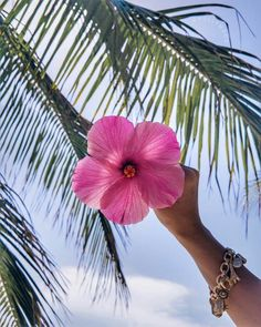 Wallpaper Iphone Summer Hawaii Shops 62 Ideas For 2019 Ocean Wallpaper, Summer Wallpaper, Iphone Wallpaper, Snow Pictures, Summer Pictures, Beach Aesthetic, Summer Aesthetic, Roses Tumblr, Hawaiian Flowers