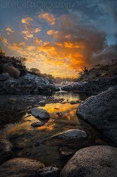 Sunset Creek Reflections, Tehuacán - Cuicatlán biosphere reserve, Puebla, México, by Luis Lyons. Reflection Pictures, Nature Pictures, Cool Pictures, Sunset Landscape, Forest Landscape, Beautiful Sky, Beautiful World, Beautiful Scenery, Landscape Photography