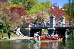 I was going to go to Boston, and then couldn't! I want to go so bad, and ride these swan boats. It is going to happen.