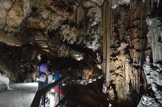 La colonne la plus grande du monde dans les Grottes de Nerja, Malaga - Costa del Sol (Espagne)