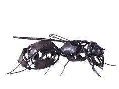 Les sculptures d'insectes et rampants de Patrice Mesnier