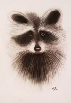 Picture: Raccoon #illustration #picture #raccoon #nature #graphics #pics #art daaashiky@gmail.com