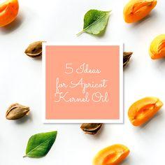Five Amazing Ideas for Apricot Oil   Blog   Sky Organics
