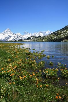 'Bachsee' above Grindelwald in Switzerland