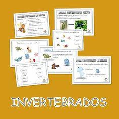 Los invertebrados. Fichas de conocimiento del medio en primaria