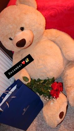 Big Teddy Bear, Teddy Girl, Foto Piercing, Cute Babies Photography, Birthday Goals, Teddy Bear Pictures, Snapchat Picture, Flower Phone Wallpaper, Relationship Goals Pictures