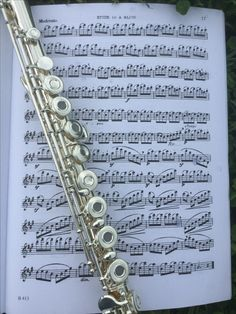 L❤️OVE flutes,band, and
