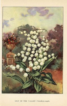 LILY of the VALLEY and CROCUS 1926 DoubleSided by wordsandmelodies, $5.00